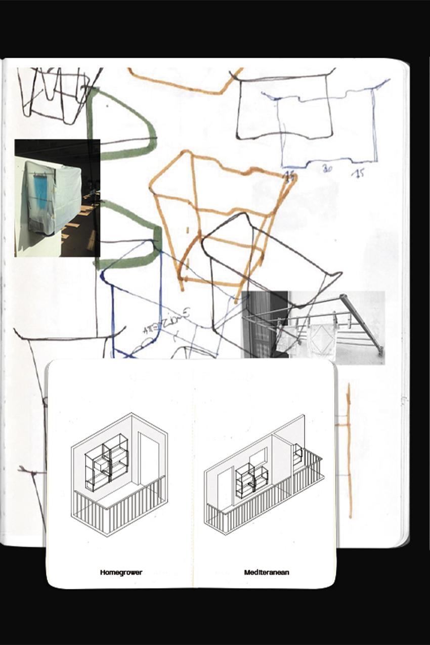 Verdello-sketchB2